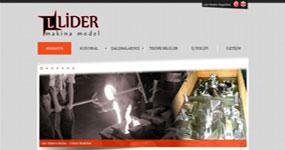 Lider Makina Model - İZMİR internet sitesi