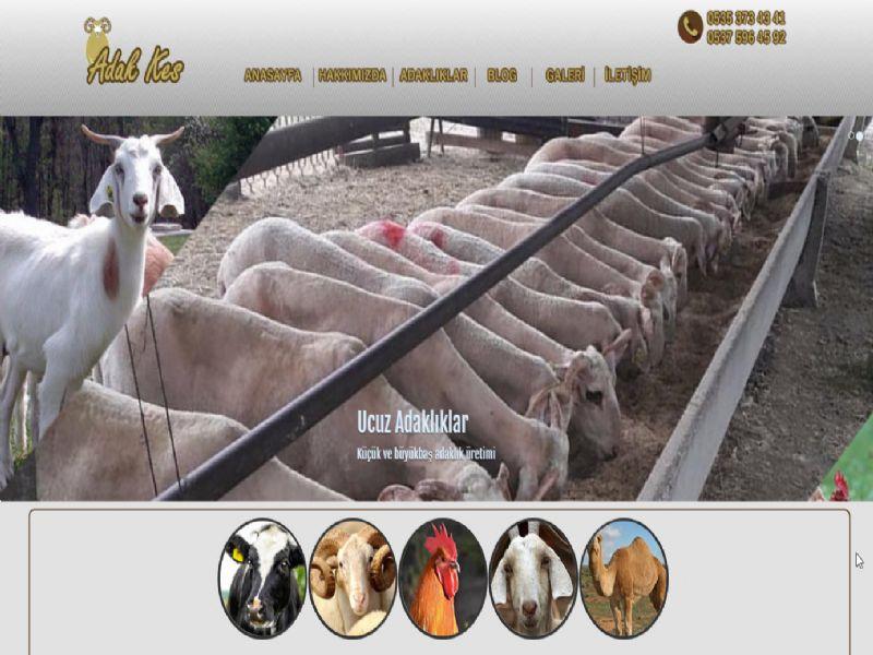 Adak Kes - İstanbul web sitesi