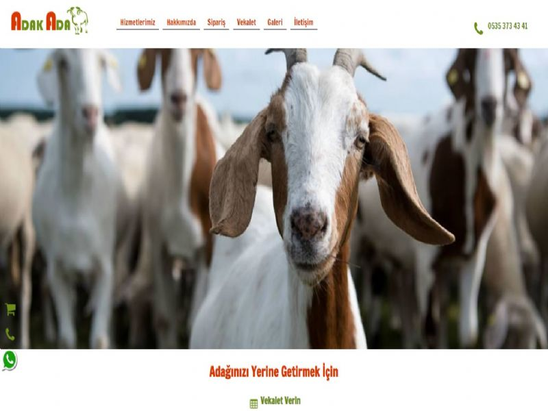 Adak Ada - İstanbul internet sitesi